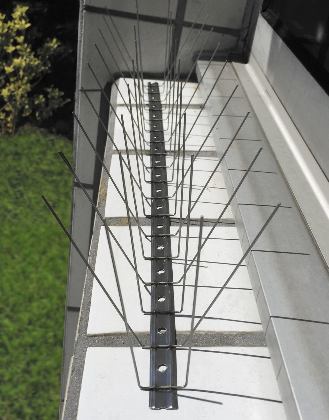 Taubenspikes aus Edelstahl komplett